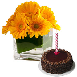 Exquisite Yellow Gerberas and Sweet Chocolate Cake with Candles for Midnight Delivery