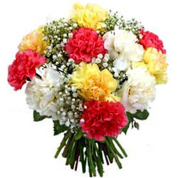 Blooming Bunch of Mixed Carnations
