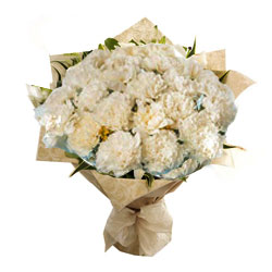Delicate Tribute White Carnations Collection