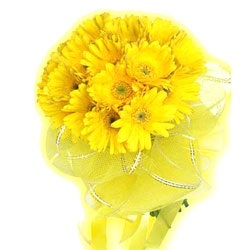 Bright Yellow Gerberas Bouquet