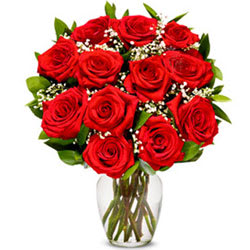 Beautiful Red Roses in a Glass Vase