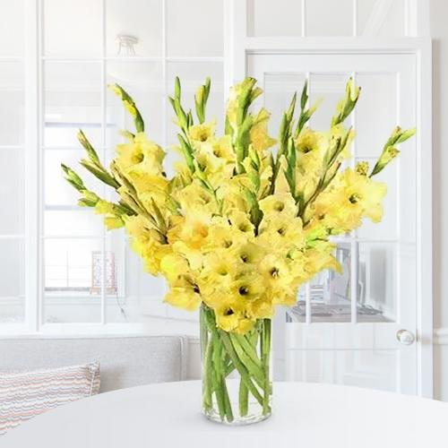 Amazing Yellow Gladiolus in a Glass Vase