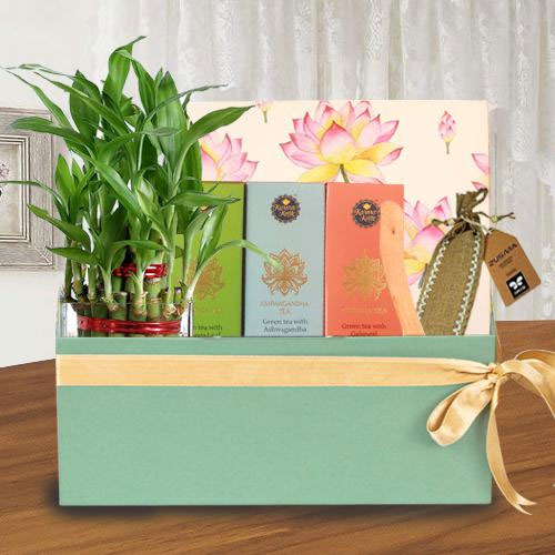 Auspicious Healing Gift Combo for Mothers Day