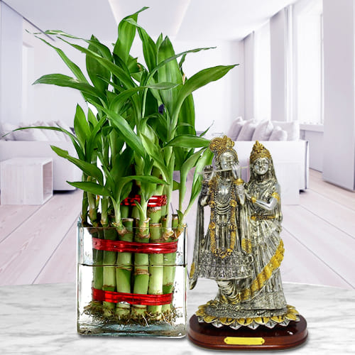 Beautiful Gift Pack of 2 Tier Good Luck Bamboo Plant in Glass Pot with Holy Radha Krishna Idol<br>