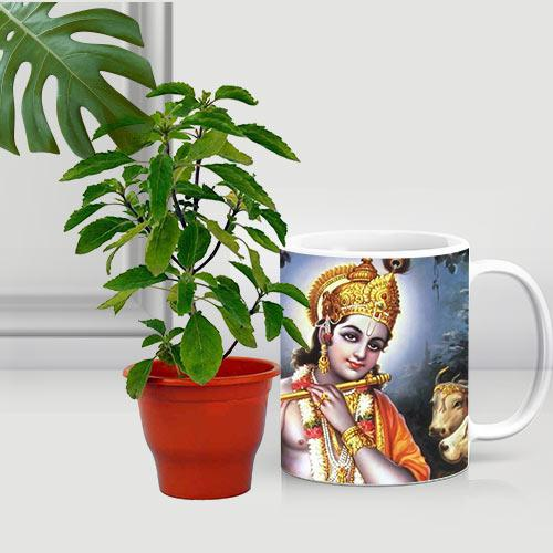 Auspicious Holy Tulsi Plant in Printed Coffee Mug